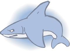 jpg_Shark